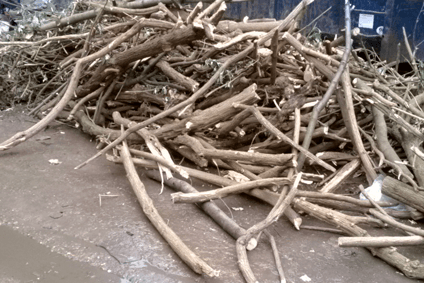 Commercial wood waste collection